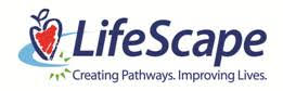 Hamsters USA raises $253,828 for special kids at LifeScape Children's Services in Rapid City, South Dakota
